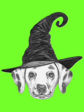 dalmatian: Portrait of Dalmatian dog with witch hat. Halloween illustration