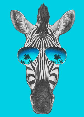 Portrait of Zebra with mirror sunglasses. Hand drawn illustration. Banco de Imagens