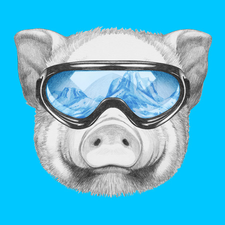 Portrait of Piggy with ski goggles. Hand drawn illustration.