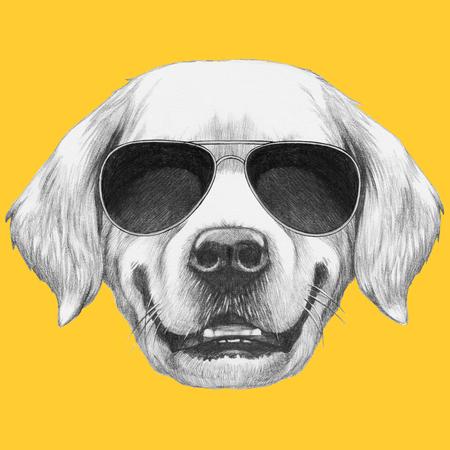 Portrait of Golden Retriever with sunglasses. Hand drawn illustration.