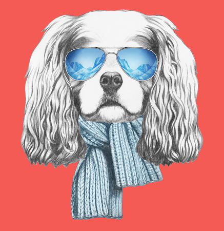 charles: Portrait of Cavalier King Charles Spaniel with scarf and sunglasses. Hand drawn illustration. Stock Photo