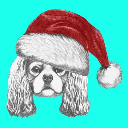 charles: Portrait of Cavalier King Charles Spaniel with Santa Hat. Hand drawn illustration.