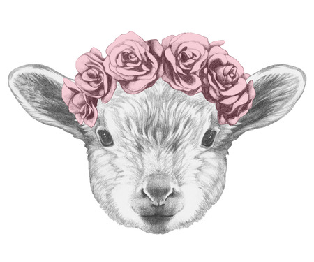 Portrait of Lamb with floral head wreath. Hand drawn illustration.