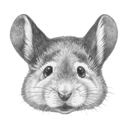 Portrait of Mouse. Hand drawn illustration. Banco de Imagens