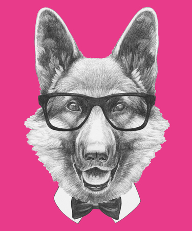 Portrait of German Shepherd with glasses and bow tie. Hand drawn illustration. Stock Photo