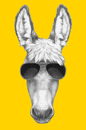 Portrait of Donkey with sunglasses. Hand drawn illustration. Stock Photo