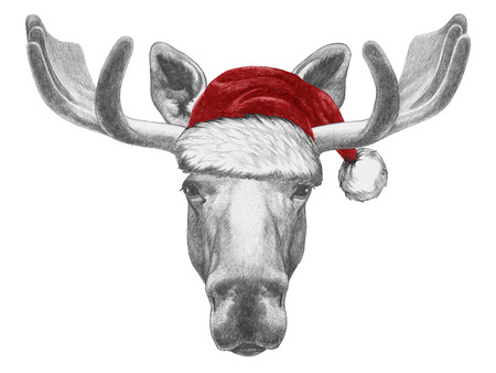 santa moose: Portrait of Moose with Santa Hat. Hand drawn illustration. Stock Photo