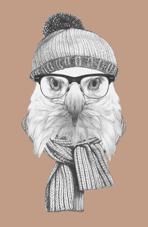 Portrait of Eagle with hat, glasses and scarf. Hand drawn illustration.