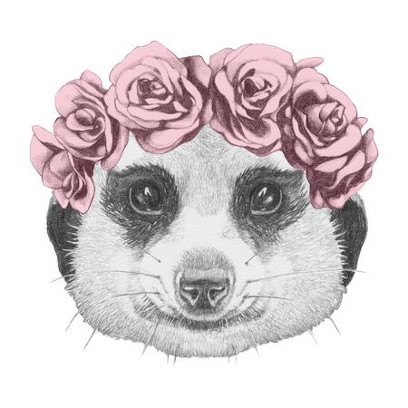 meerkat: Portrait of Meerkat with floral head wreath. Hand drawn illustration.
