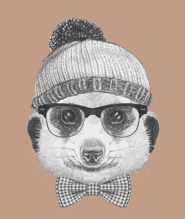 meerkat: Portrait of Hipster Animal. Meerkat with glasses, hat and bow tie. Hand drawn illustration.
