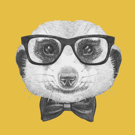 meerkat: Portrait of Meerkat with glasses and bow tie. Hand drawn illustration.