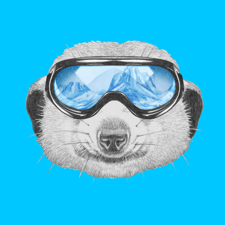 Portrait of Meerkat with ski goggles. Hand drawn illustration.