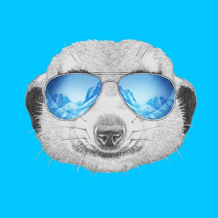 meerkat: Portrait of Meerkat with mirror sunglasses. Hand drawn illustration.
