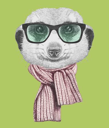 メガネとスカーフのミーアキャットの肖像画。手描きのイラスト。