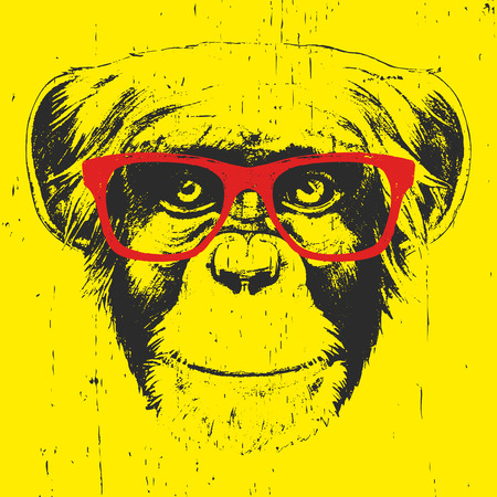 Portrait of Monkey with glasses. Hand-drawn illustration. T-shirt design. Vector
