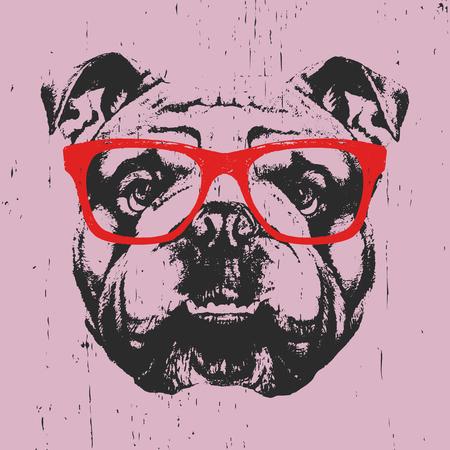 Retrato de Bulldog Inglés con gafas. Dibujado a mano ilustración. Vector.