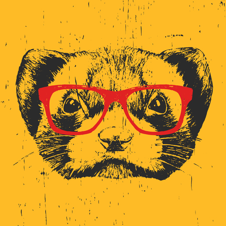 Portrait of Least Weasel with glasses. Hand drawn illustration. Vector