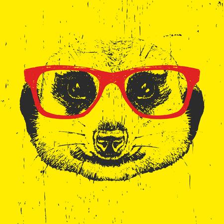 meerkat: Portrait of Meerkat with glasses. Hand drawn illustration. Vector