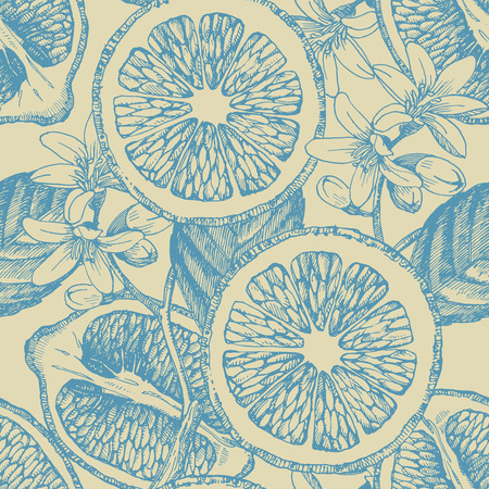 Seamless pattern with citrus fruits. Vector lemon. Hand drawn illustration.