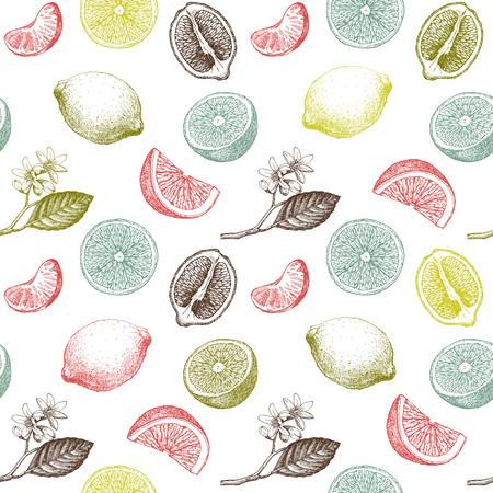 Patrón sin fisuras con limones, naranjas y mandarinas. Ilustración dibujada a mano.