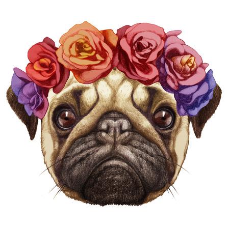 Ritratto di Pug Dog con corona di testa floreale. Illustrazione disegnata a mano, colorata digitalmente.
