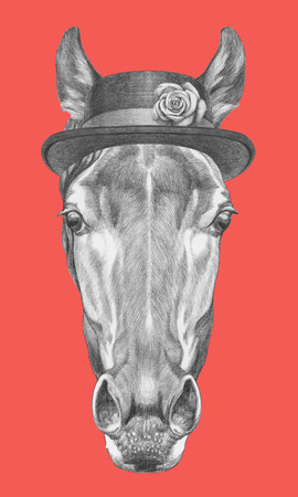 Portrait of Horse with hat. Hand drawn illustration.