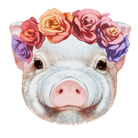 Portrait of Piggy with floral head wreath. Hand-drawn illustration, digitally colored. Stock Photo