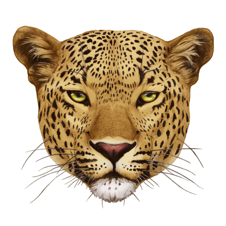 Portrait of Leopard. Hand-drawn illustration, digitally colored.