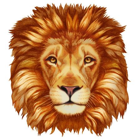 ライオンの肖像画。手描きイラスト、デジタル色します。