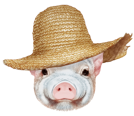 Portrait  of Piggy with straw hat. Hand-drawn illustration, digitally colored.
