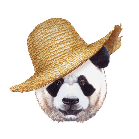 Portrait of Panda with straw hat. Hand-drawn illustration, digitally colored.