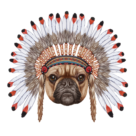 french culture: Portrait  of French Bulldog in war bonnet. Hand-drawn illustration, digitally colored. Stock Photo