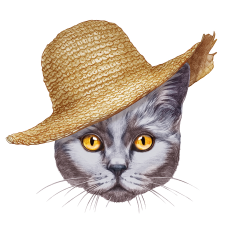 Portrait  of Cat with straw hat. Hand-drawn illustration, digitally colored.