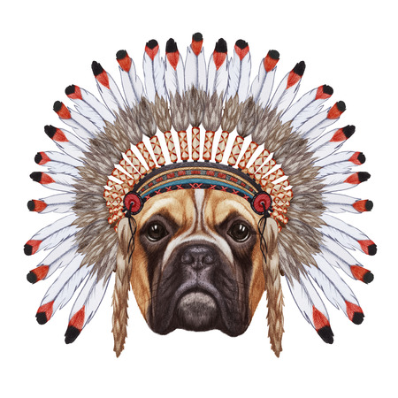 Portrait  of Boxer Dog in war bonnet. Hand-drawn illustration, digitally colored.