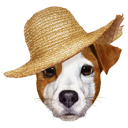Portrait of Jack Russell with straw hat. Hand-drawn illustration, digitally colored.