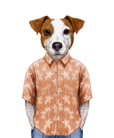 Portrait of  Jack Russell in summer shirt. Hand-drawn illustration, digitally colored.