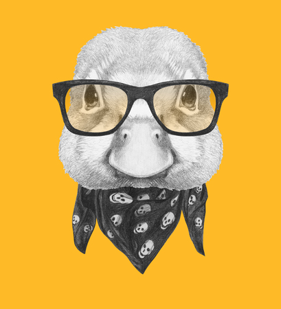 Portrait of Duck with glasses and scarf. Hand drawn illustration.