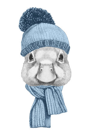 Portrait of Duck with hat and scarf. Hand drawn illustration.