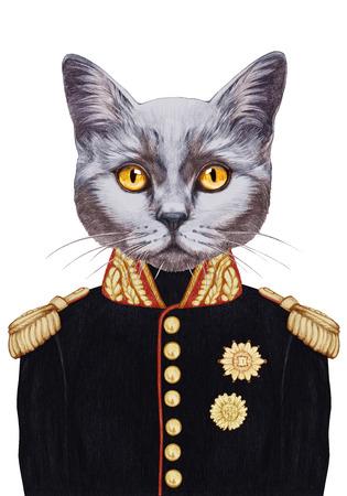 Portrait of Cat in military uniform. Hand-drawn illustration, digitally colored. Banco de Imagens