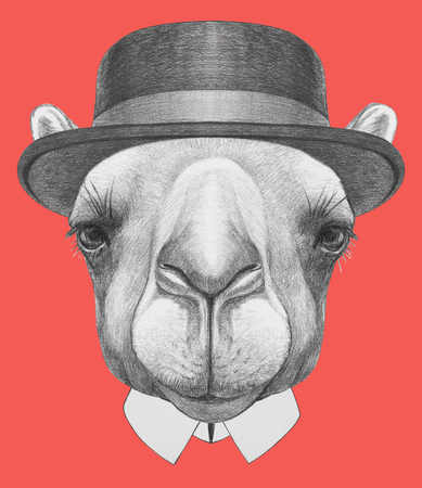 Portrait of Camel with hat. Hand drawn illustration. Stock Photo
