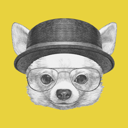 chihuahua: Portrait of Chihuahua with glasses and hat. Hand drawn illustration.