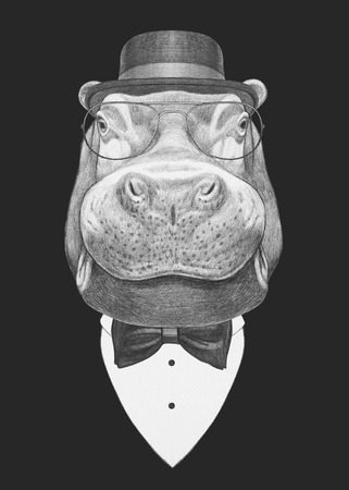 big shirt: Portrait of Hippo in suit. Hand drawn illustration.