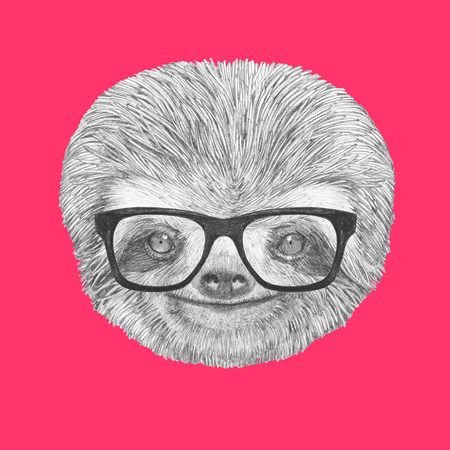 sloth: Portrait of Sloth with glasses. Hand-drawn illustration.