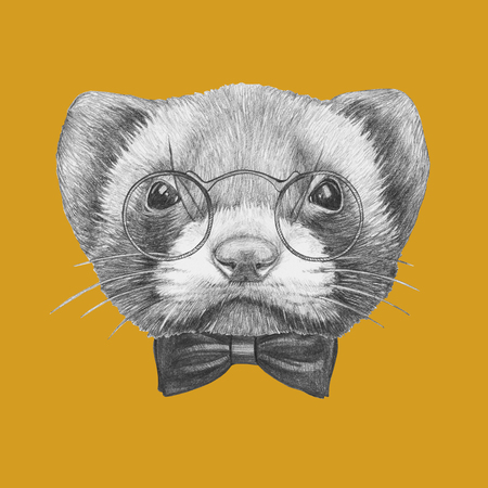 Portrait of Least Weasel with glasses and bow tie. Hand drawn illustration. Stock Photo