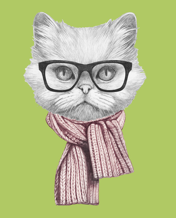 Portrait of Persian Cat with scarf and glasses. Hand drawn illustration.