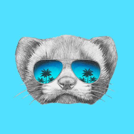stoat: Portrait of Least Weasel with sunglasses. Hand drawn illustration.