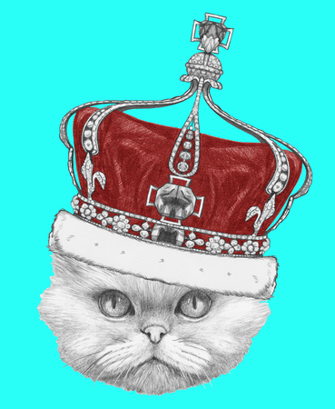 Portrait of Persian Cat with crown. Hand drawn illustration. Stock Photo