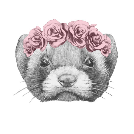 stoat: Portrait of Least Weasel with floral head wreath. Hand drawn illustration.