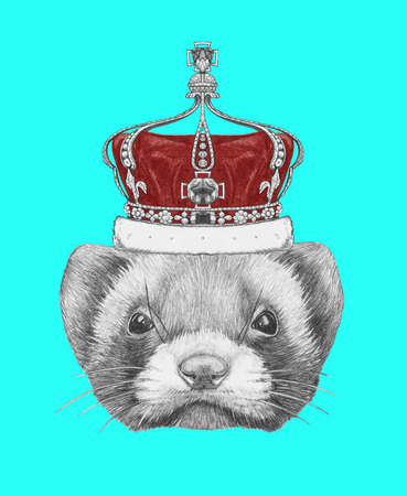 Portrait of Least Weasel with crown. Hand drawn illustration.