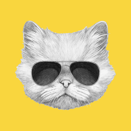 Portrait of Persian Cat with sunglasses. Hand drawn illustration.